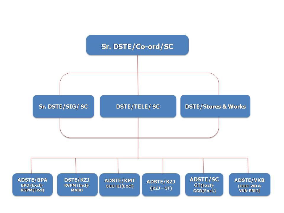 S&T Organisation Structure